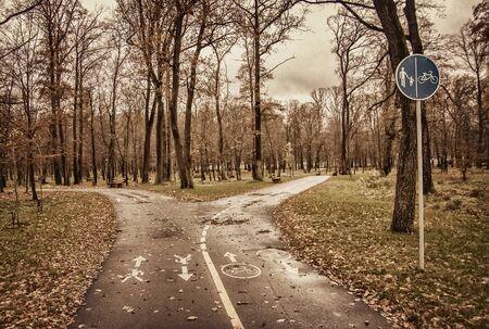 autumn park, bicycle lane and footpath. Фото со стока