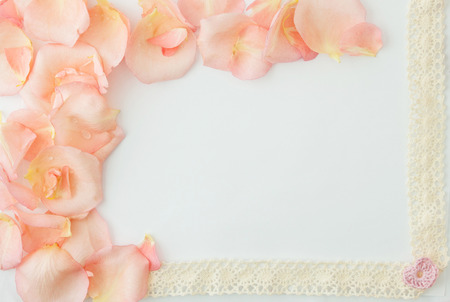 valentines day background. White background with soft pink rose petals and pink little heart.