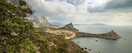 panorama, horizontal view of bay, Crimean mountains with rocky coastline, Black sea. Pine in the foreground.