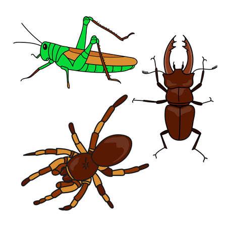 Insect collection cartoon set. Ilustração