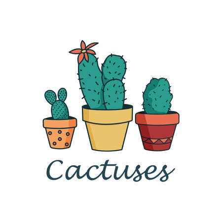 Vector set of caroon cactus plants in pots with outlines. Cactuses for design isolated on white background.