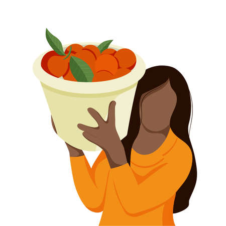 Workers Pick Orange In Plantation
