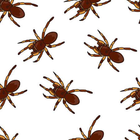 Tarantula pattern seamless in simple style vector illustration