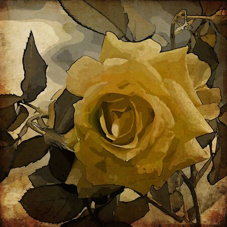 art floral vintage colorful background Stock Photo - 13997914