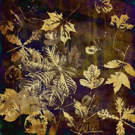 art leaves autumn background card photo