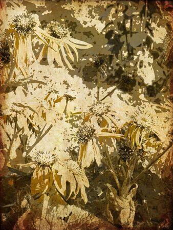 art floral vintage colorful background Stock Photo - 14057703