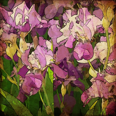 gladiolus: art grunge floral vintage background texture