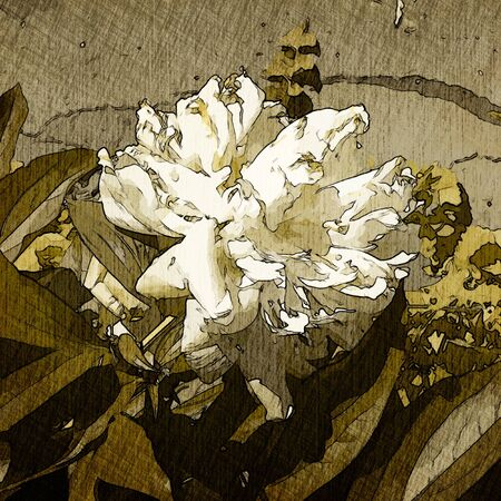 art floral vintage colorful background photo