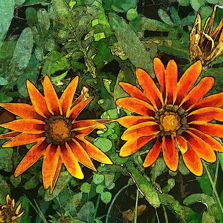art grunge floral vintage background Stock Photo - 17371095