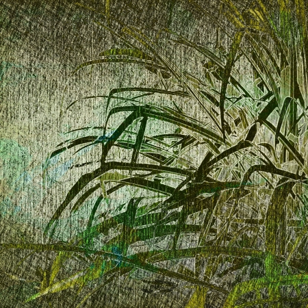 art leaves season background card Stock Photo - 17397483