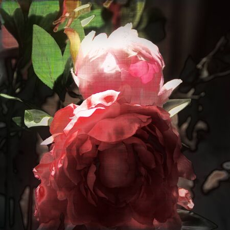 art floral vintage background with red and pink roses photo