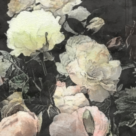 art floral vintage watercolor background with white  and light pink roses and peonies