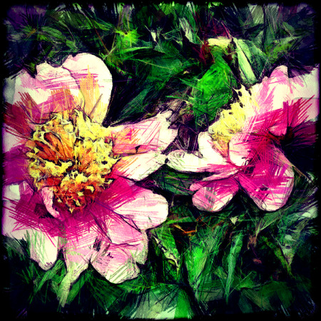 art grunge floral vintage background with peony photo
