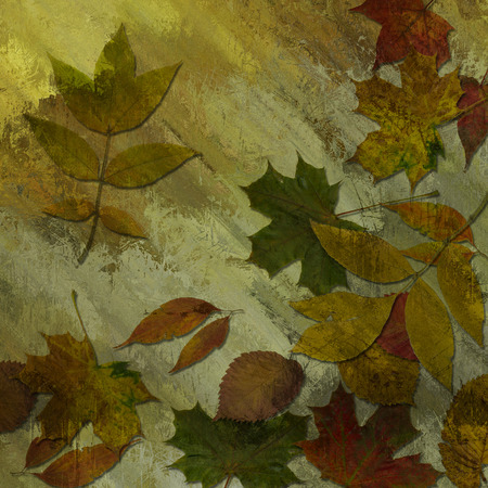 art autumn leaves background in green, beige and brown colors photo