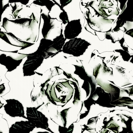 abstract seamless: art vintage monochrome graphic floral seamless pattern with white roses on white background in black and white colors