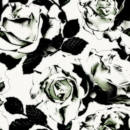 rosas negras: arte Vintage blanco y negro gr�fico sin fisuras patr�n floral con rosas blancas sobre fondo blanco en colores blanco y negro Foto de archivo