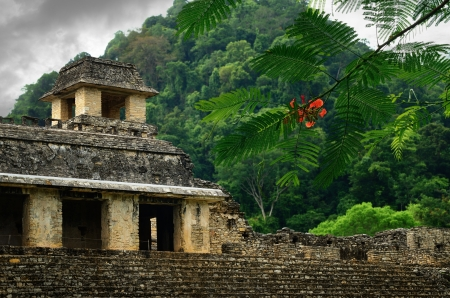 explores: The ruins of the ancient Mayan city of Palenque, Mexico.