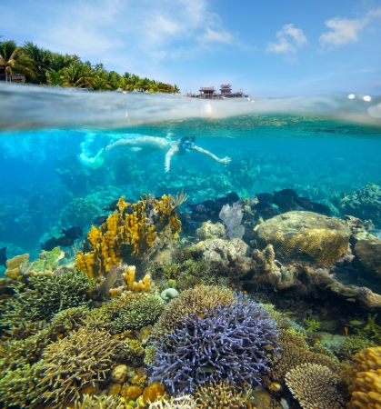 The young girl is engaged to a beautiful snorkeling reef photo