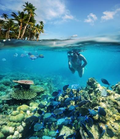 En quête d'aventure sous-marine sur les récifs coralliens 2 Banque d'images - 19148221
