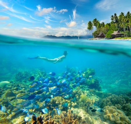 Woman swims around a beautiful coral reef surrounded by a multitude of fish on the background Islands