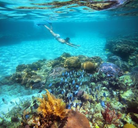 Žena šnorchlování v nádherné korálové útesy se spoustou ryb Reklamní fotografie