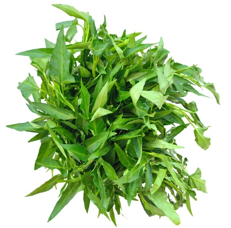 spinage: Bunch of fresh spinach on top of a white