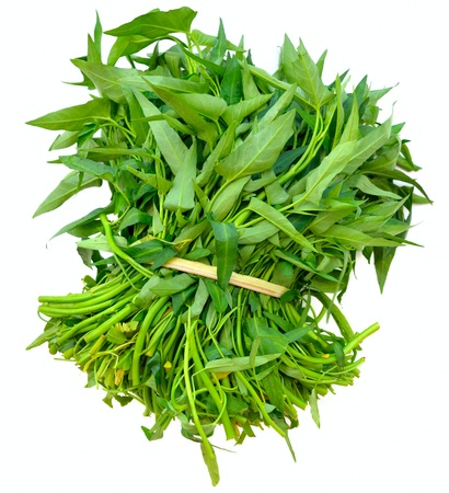 Bunch of fresh spinach on a white background  photo