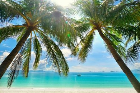 Mooie zonnige strand met palmbomen op de achtergrond van de eilanden