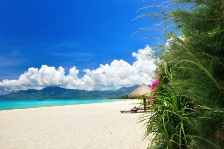 tropical paradise: Tropical paradise beach  Vietnam Stock Photo