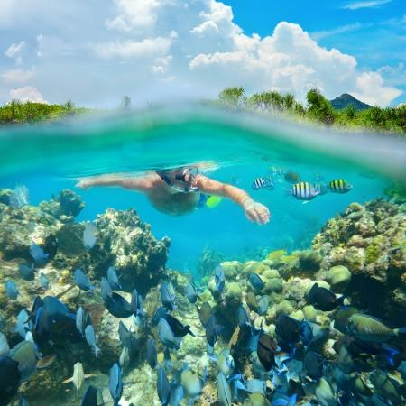 Snorkeler potápění podél krásným korálovým útesem