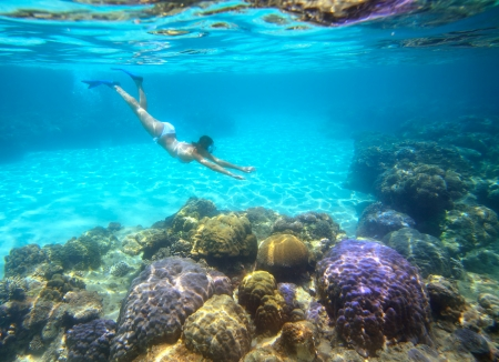 A woman snorkeling in the beautiful coral reef with lots of fish Vietnam