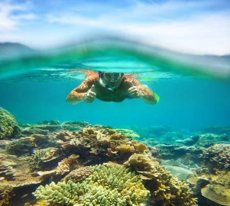 Underwater portrait of a man snorkeling coral reef  in tropical sea   Vietnam