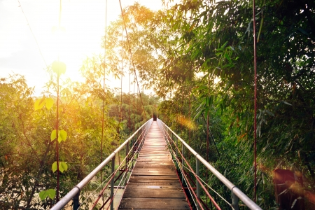 Suspension bridge in a tropical forest at sunset  Vietnam