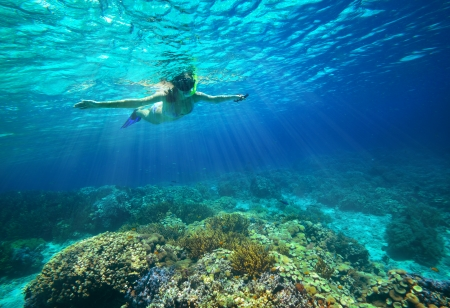 Underwater shot of a woman snorkeling in the sun  photo
