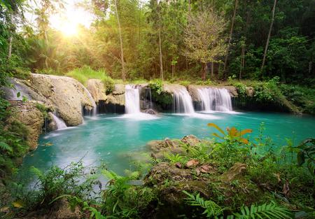 Deep Forest Vodopád Národní park ostrov Siquijor. Filipíny