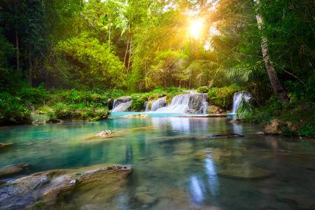 Cascade de Deep forest parc national île de Siquijor. Philippines Banque d'images - 26956824