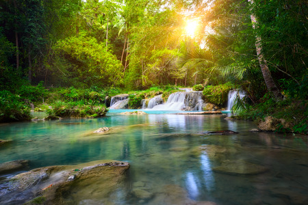 Deep forest waterfall  National Park  island of Siquijor. Philippines