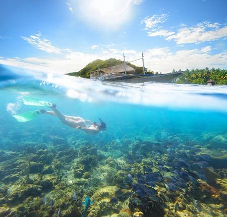apo: Beautiful underwater world on a sunny day at Apo Island. Philippines Stock Photo