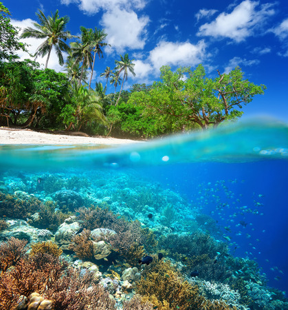 waterline: Coral reef, beautiful  island and wild beach, traveling along Asia, active lifestyle concept Stock Photo