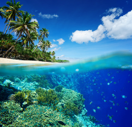 waterline: Coral reef in tropical sea on a background of green island