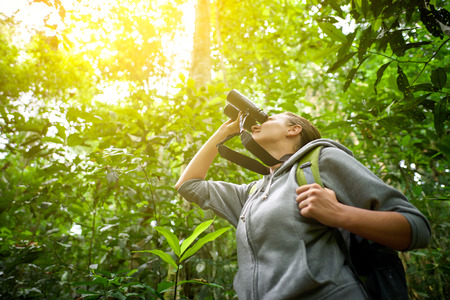 green forest: Tourist looking through binoculars considers wild birds in the jungle.Bird watching tours