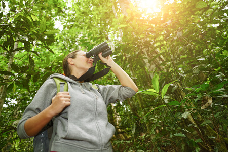 hiker watching through binoculars wild birds in the jungle. Bird watching tours