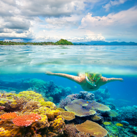 Young woman swimming on the bright coral reef in the sea on a background of a tropical beach. Lombok, Indonesia Banco de Imagens