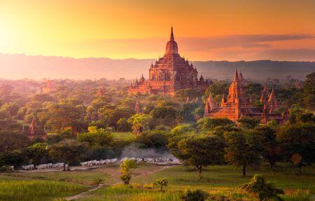 バガン、ミャンマー (ビルマ) の平野の五重塔の風景