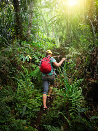 Woman traveler with backpack climb the hill in rain forest. Adventure, travel, tourism, hike in jungle concept. 