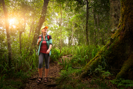 Woman traveler with backpack walking along the trail in the rain forest. Island Lombok, Indonesia.