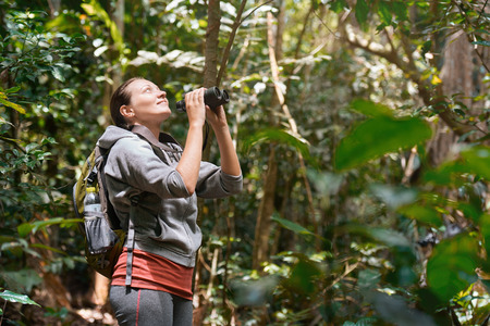 bird watching: Hiker watching through binoculars wild birds in the tropical jungle. Bird watching tours. Ecotourism concept image travel.