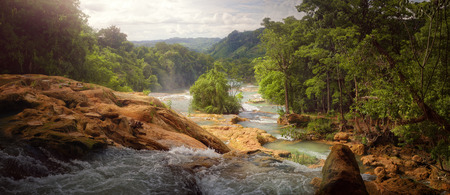 tropical forest: Beautiful panoramic view of the rain forest and waterfalls in Central America. Mexico
