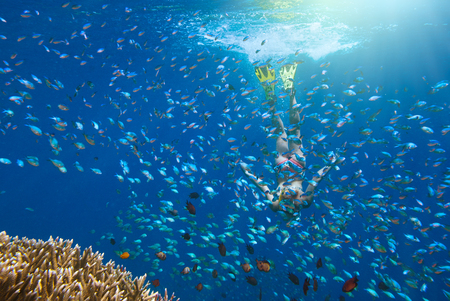 woman at snorkeling surrounded by a multitude of fish