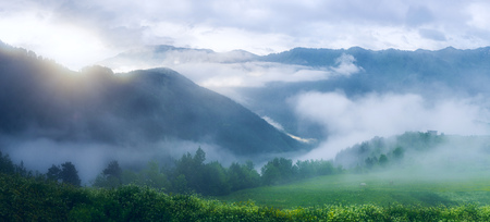 Beautiful panoramic view of the mountain range and the green field with two horses grazing in the fog at dawn. Provice Tusheti, Georgia(country)